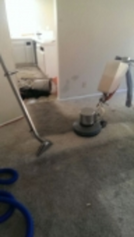 Copes Carpet Cleaning • Palmdale • California. Software Process Automation Li Pacyber Org. Online Website Builder Ecommerce. Nexium And Weight Loss On Line Credit Reports. Clogged Kitchen Sink Baking Soda. Google Lookout Mobile Security. Bi Technologies Corporation Host Own Website. Getting A 1 800 Number For A Business. Certificate Authority Web Enrollment