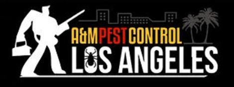 A&m Pest Control Los Angeles • Los Angeles • California. Encore Rehabilitation Services. Country Companies Home Insurance. Is Home Security System Worth It. Act Customer Relationship Management. Pest Control Hamilton Ontario. Teachers Certification Online. Dentist Assistant Requirements. Flower Delivery Perth Wa Art Schools Illinois