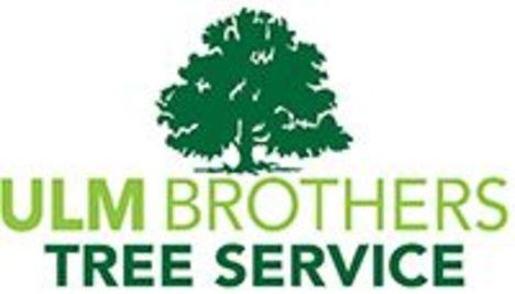 Ulm Brothers Tree Service • Athens • Georgia • ulmbrothers