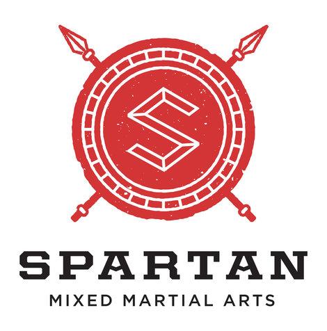 mixed martial arts essays