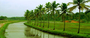 7D/6N Kerala Tour Package @ $285 with TU, Talk to Travel Expert