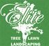 Elite Tree Lawn & Landscaping