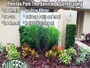 Silverson Tree Services & Landscaping - Pinellas Park