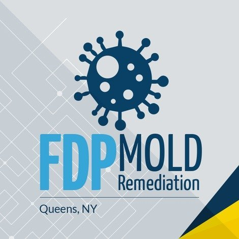 FDP Mold Remediation