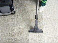 HANDYMAN KING SOLOMON | Carpet Cleaners Near Me Shoreline WA