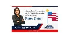 Websites SEO Companies - Searchberg