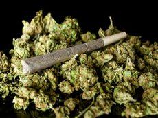 Mail Order Marijuana Online With Worldwide Shipping