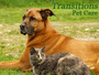 Transitions Pet Care