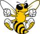 The Digital Swarm, LLC