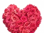 Nostrand Florist & Sympathy Flowers of NY
