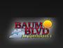 Baum Boulevard Automotive
