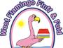 A West Flamingo Fluff & Fold