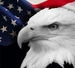 American Eagle Insurance