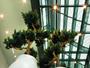 Fire Retardant Artificial Plants